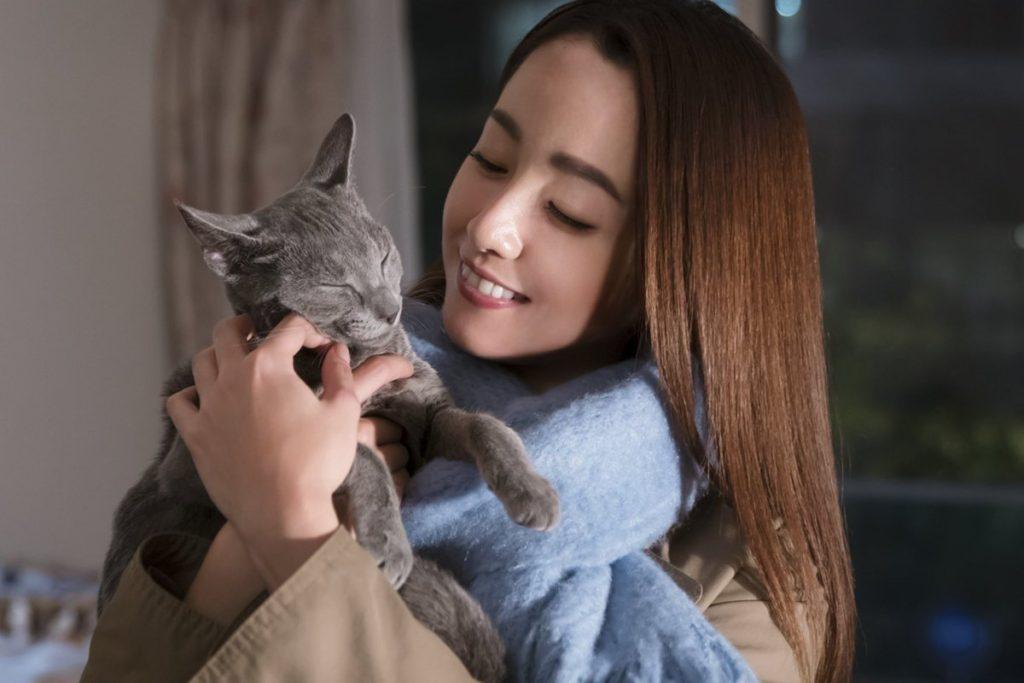 映画猫は抱くもの