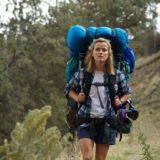 登山 映画