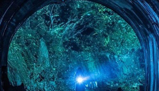 実在する村が舞台の映画『犬鳴村』のネタバレと評価を詳しく紹介!賛否両論の理由とは?