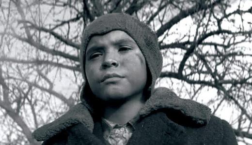 【解説】映画『異端の鳥』のネタバレあらすじ結末|途中退出者が続出した問題作