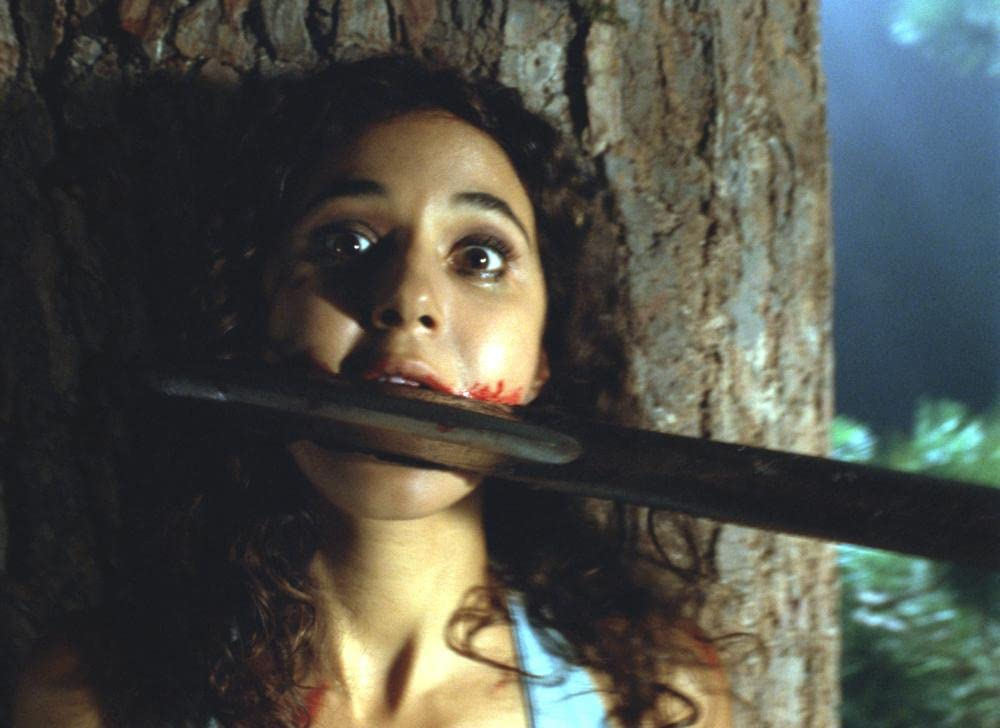 映画『クライモリ』(2003)のあらすじをネタバレ解説|ホラー初心者にもおすすめ